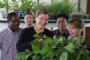 IIHR Research Engineer Jerry Schnoor (center) and students (l to r) Richard Meggo, Sam Bircher, Guangshu Zhai, and Alexandra Beebe examine some hybrid poplar plants in the lab.