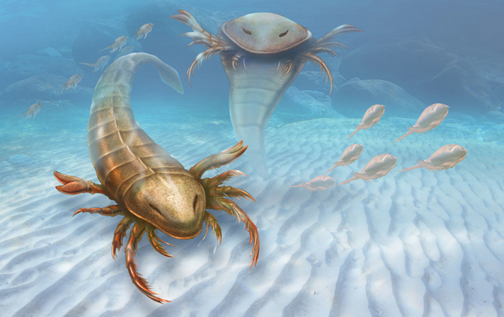 Meet your next nightmare: Pentecopterus, an ancient six-foot scorpion-like sea creature, is named after an ancient Greek warship. (Illustration by Patrick Lynch, courtesy of Yale University)