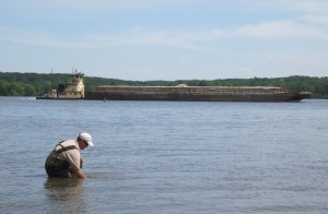 Digging for mussels on the Mississippi