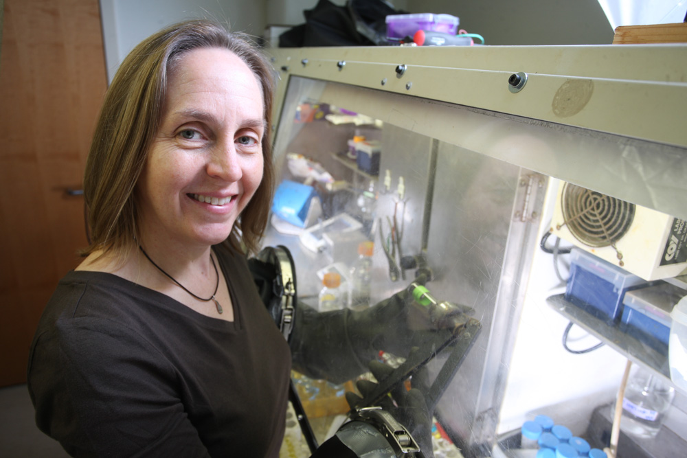 A woman uses a glove box in a lab