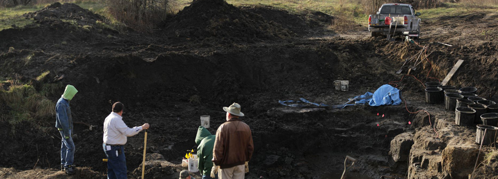Panoramic view of the dig site in Southeast Iowa. Photo by Frank A. Weirich