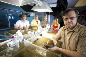 Anton Krueger (right) holds one of the back-wearing mussels, plucked from the laboratory microhabitat. From left, the team includes Craig just, Jim Niemeier, Jon Durst, and Hannah Taylor.