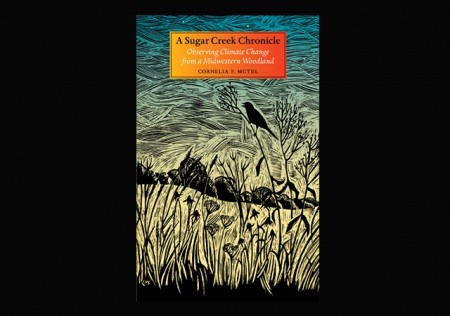 Cover art by Claudia Mcgehee for Connie Mutel's book, A Sugar Creek Chronicle: Observing Climate Change from a Midwestern Woodland