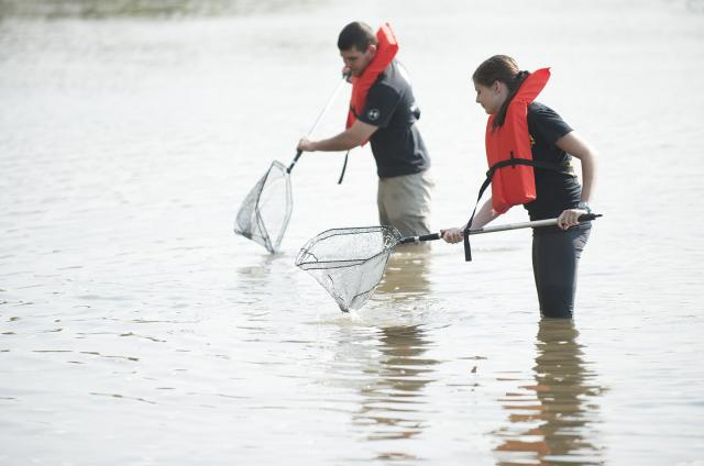 UI College of Engineering graduate student Lee Hauser, left, works with an undergraduate researcher examining mussels to study water quality in the Iowa River. File photo by Tim Schoon.