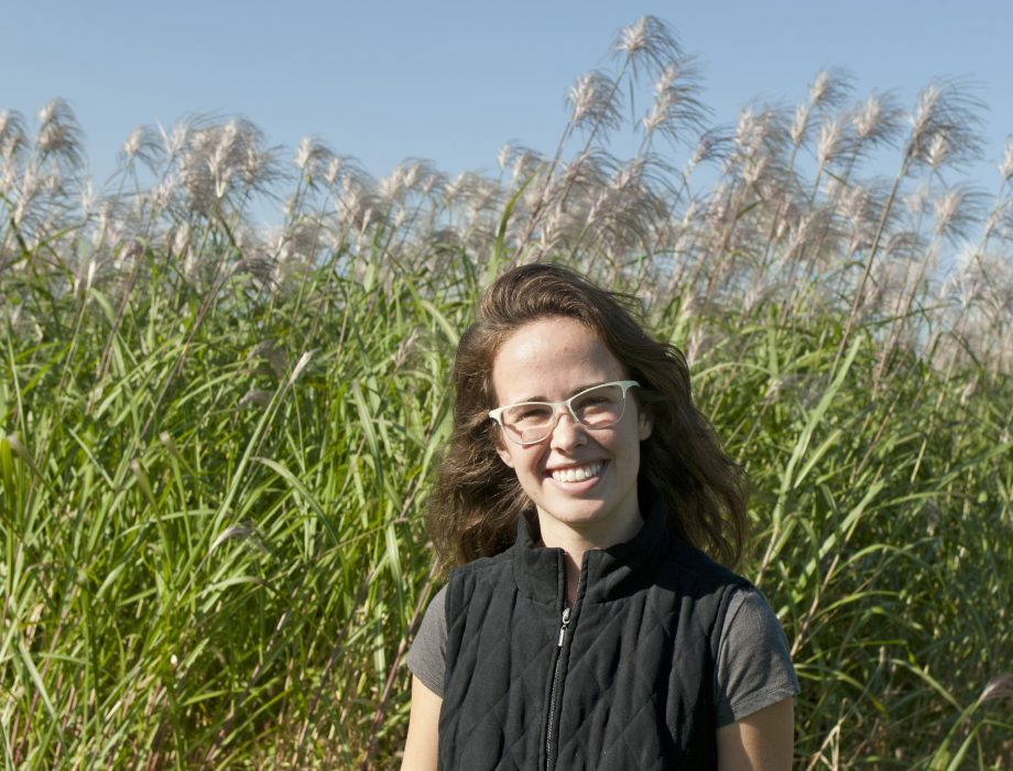 A young woman poses in front of a field of miscanthus, which towers over her head.