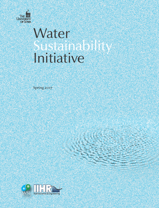 Cover image for the 2017 WSI annual report, showing a series of water ripples on a blue field.